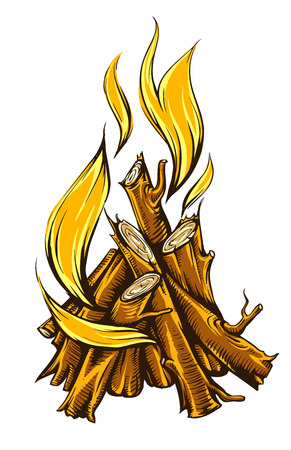Flame fire of campfire with firewood. Isolated on white background Illustration