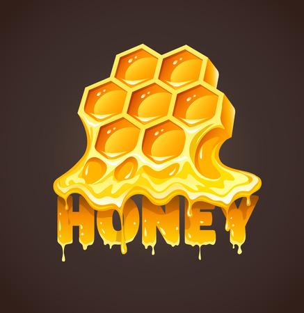 Honey in honeycombs. Eps10 vector illustration. Illustration