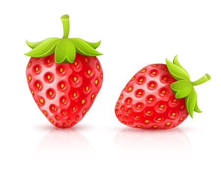 イチゴの赤熟した果実が分離されました。Eps10 のベクター イラストです。白い背景に分離  イラスト・ベクター素材