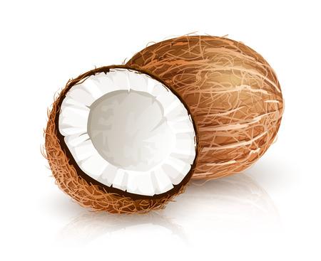 Coco tuerca de la fruta tropical con el corte