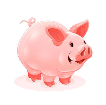 Pink piggy young cartoon animal, isolated white background. Eps10 vector illustration.