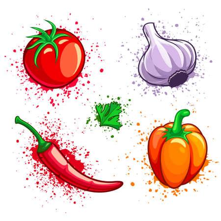 Set of fresh organic vegetables. Cherry tomato, cayenne pepper, garlic, chili and green parsley with grunge splashes. Eps10 vector illustration. Isolated on white background