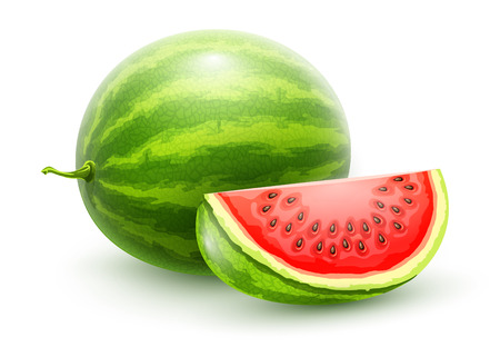 Sweet watermelon. Whole fresh ripe sweet fruit with sliced juicy piece of cut. Watermelon realistic fruits, isolated on white background. EPS10 vector illustration. Illustration
