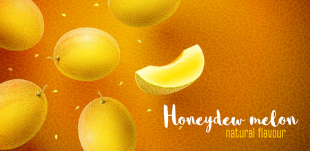 Honeydew melon flavour poster banner design with pattern and copyspace. Whole fresh ripe sweet fruit with sliced juicy piece of cut. Melon realistic fruits, flying and falling. EPS10 vector illustration.