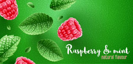 Red raspberry berries. Green mint leaves banner design with copyspace. Ingredients for refreshing drinks like lemonade. Realistic falling leaves of spearmint and raspberries. Vector illustration. Illustration