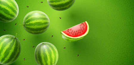 Watermelon flavour poster banner design with pattern and copyspace. Whole fresh ripe sweet fruit with sliced juicy piece of cut. Watermelons realistic fruits, flying and falling. EPS10 vector illustration.