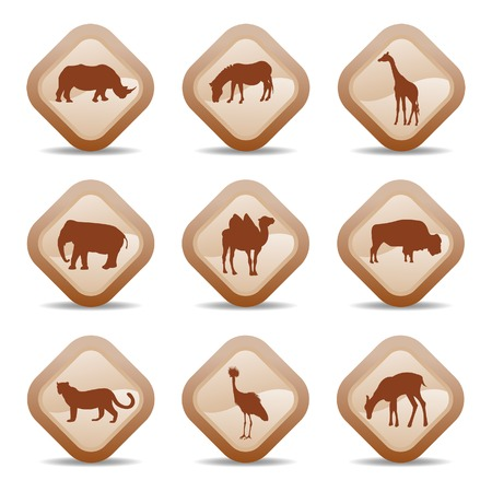 zoo dry: Range of african animal icons Illustration