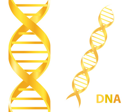 Gold Dna. Vector illustration on white background