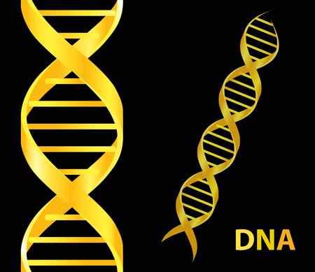 Gold Dna icon. Vector illustration on black background Ilustração