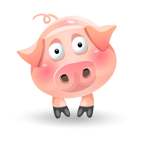 Cute funny cartoon fat pig character on white background.