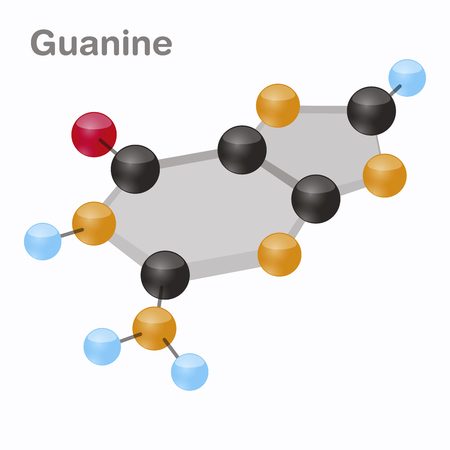 Guanine HexNut, G. Purine nucleobase molecule. Present in DNA. 3D vector illustration on white background. Vettoriali