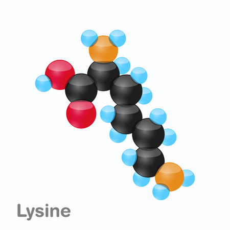 Molecule of Lysine, Lys, an amino acid used in the biosynthesis of proteins