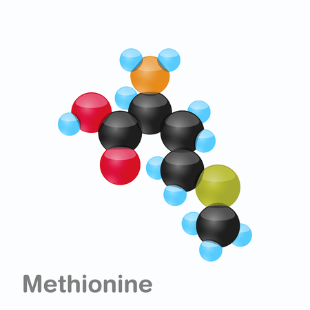 Molecule of Methionine, Met, an amino acid used in the biosynthesis of proteins