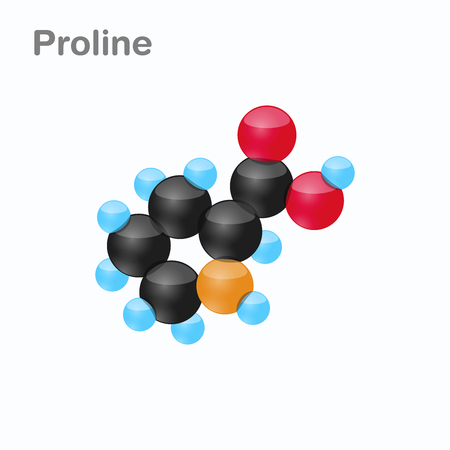Molecule of Proline, Pro, an amino acid used in the biosynthesis of proteins