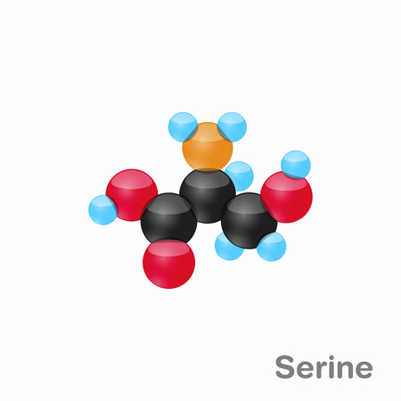 Molecule of Serine, Ser, an amino acid used in the biosynthesis of proteins