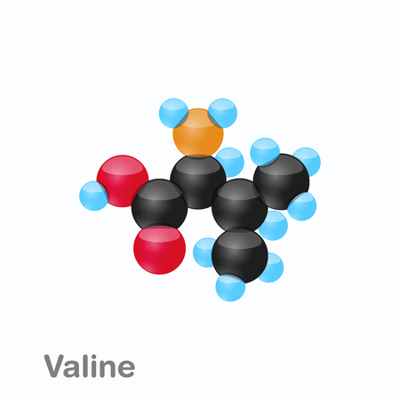 Molecule of Valine, Val, an amino acid used in the biosynthesis of proteins Ilustração