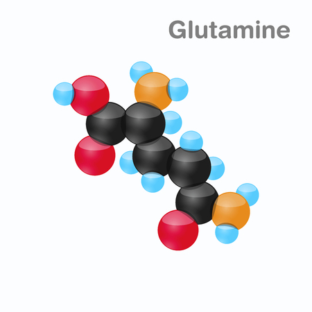 Molecule of Glutamine, Gln, an amino acid used in the biosynthesis of proteins Illustration