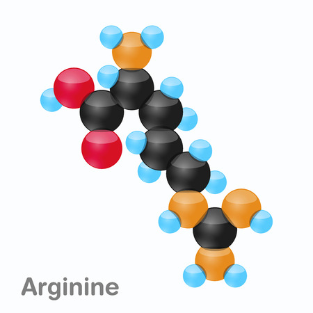 Molecule of Arginine, Arg, an amino acid used in the biosynthesis of proteins
