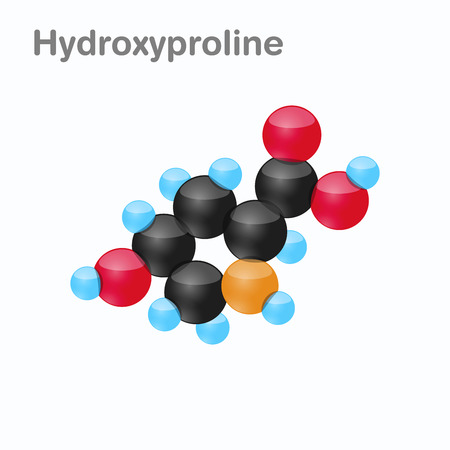 Molecule of Hydroxyproline, Hyp, an amino acid used in the biosynthesis of proteins, Vector illustration Illustration