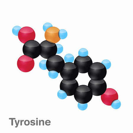 Molecule of Tyrosine, Tyr, an amino acid used in the biosynthesis of proteins