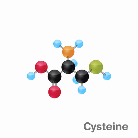Molecular omposition and structure of Cysteine, Cys, best for books and education