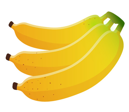 Bananas bunch, vector illustration, isolated on white background