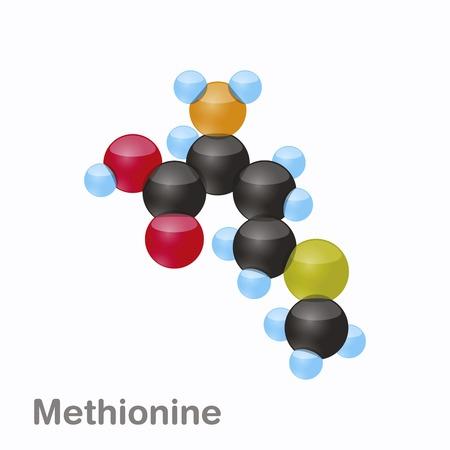 Molecule of Methionine, Met, an amino acid used in the biosynthesis of proteins