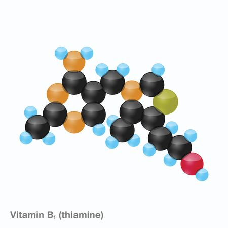 The molecule of vitamin B1 (thiamine). Vector illustration in 3d style, isolated on white background. Иллюстрация