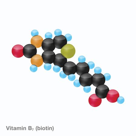 The molecule of vitamin B7 (biotin). Vector illustration in 3d style, isolated on white background. Иллюстрация