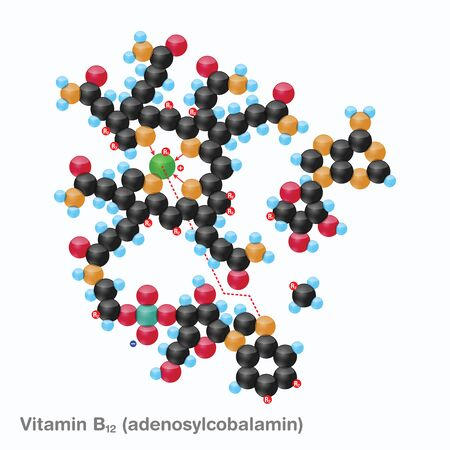The molecule of vitamin B12 (adenosylcobalamin). Vector illustration in 3d style, isolated on white background.