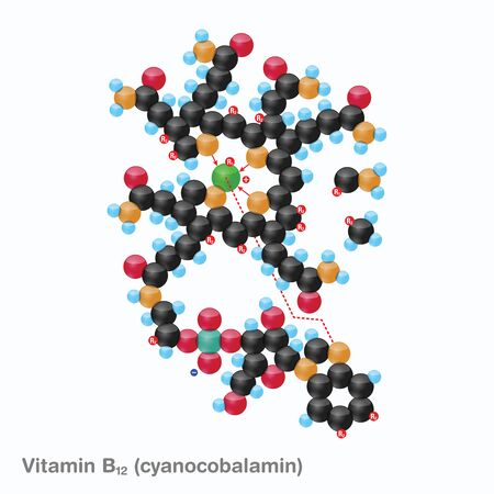 The molecule of vitamin B12 (cyanocobalamin). Vector illustration in 3d style, isolated on white background.