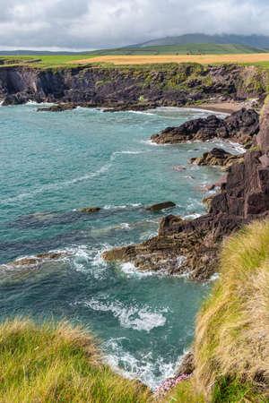 Coastline in Ireland with green meadows. Scenic coastline in Ireland. Beautiful coastline with cliffs on Dingle Peninsula, Ireland.