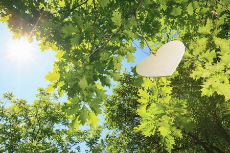 environmentalist: A heart floting on a big tree