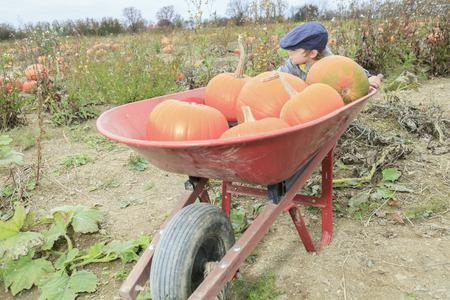 2 to 3 years: Un sorridente ragazzo del bambino con la zucca sulla fredda giornata d'autunno
