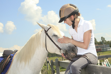 A white horse on yellow flower field with a rider.