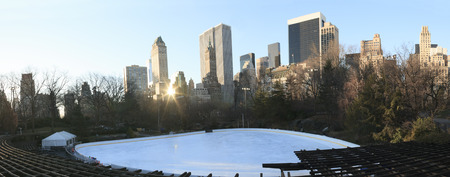 handcarves: A panorama of the ice place at New York