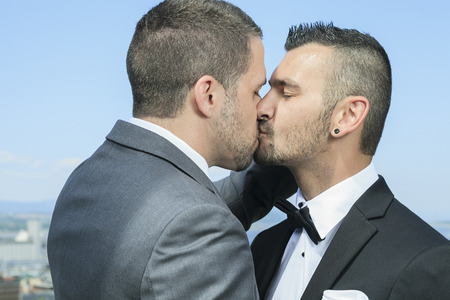 gay love: Portrait of a loving gay male couple on their wedding day. Stock Photo