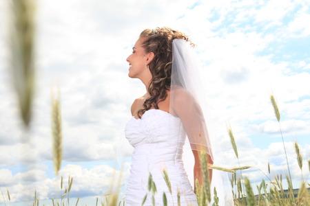 hay field: Un ritratto di sposa vicino campo di fieno