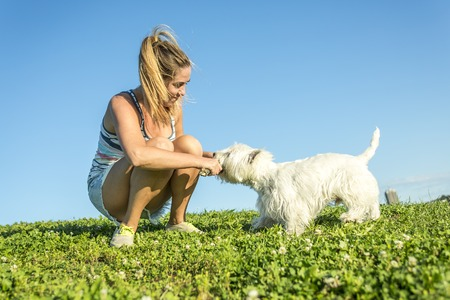 westie: A portrait of beautiful girl keeping pretty white West Highland dog outdoor Stock Photo