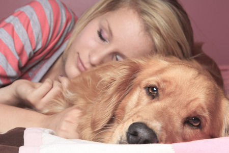 retreiver: A Girl and her dog sleeping together on a bedroom.