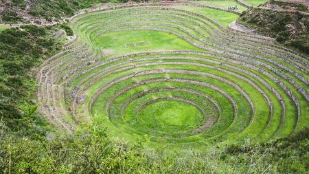 ウツボ (農業試験場)、ペルーで古代インカの円形のテラス