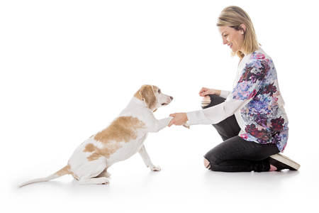 A Dog with woman are posing in studio - isolated on white background Stock Photo