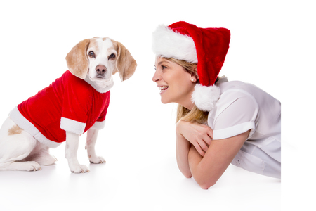 Beagle puppy and woman christmas on white background Stock fotó