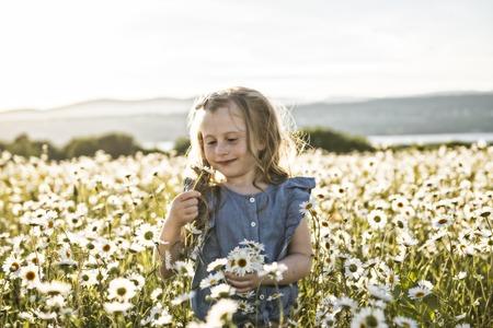 Cute child girl at camomile field daisy