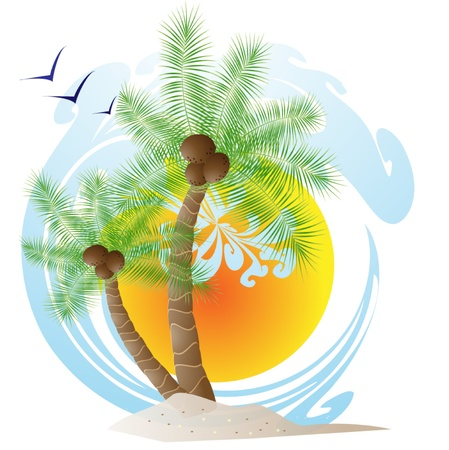 Tropical palm trees Stock Vector - 13813136