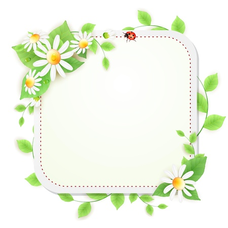 Background with daisies flowers and lady bug Vector
