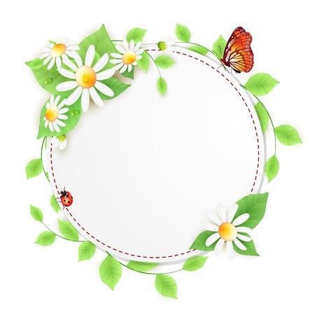 kamille: Hintergrund mit G�nsebl�mchen Blumen und Marienk�fer Illustration