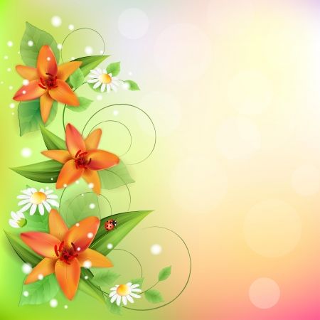 orange lily: Summer background with beautiful flowers Illustration