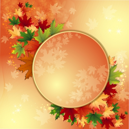 maple tree: Autumn background with maple leaves