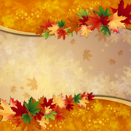 autumn background: Autumn background with maple leaves